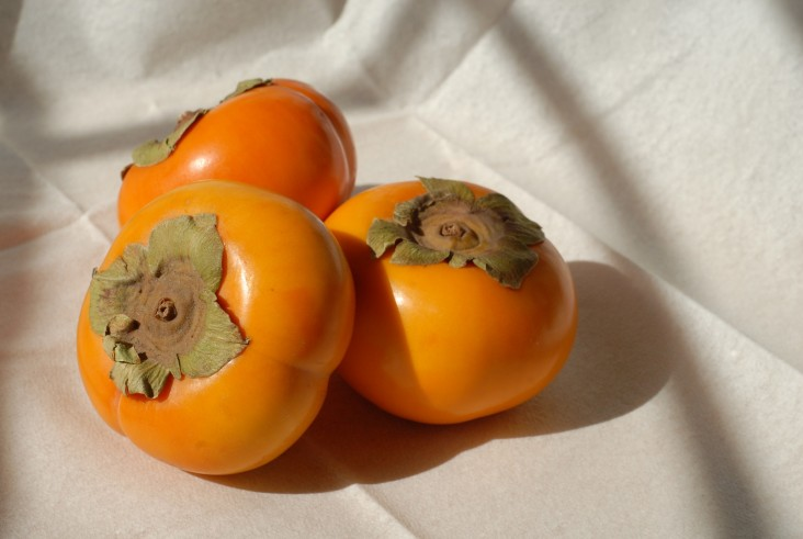 persimmons-1456186_1920